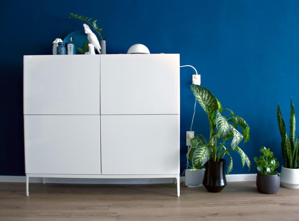 Full-indigo-home-label1114-1