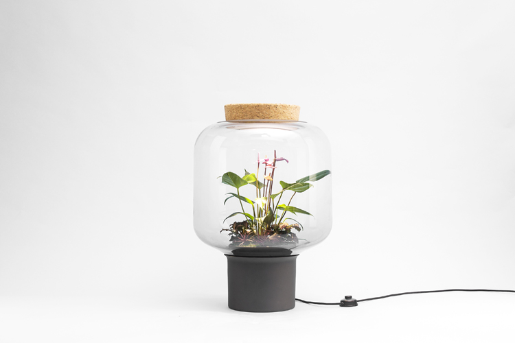 mygdal-plant-lamp-by-nui-studio-©ErwinBlock-Photography-6
