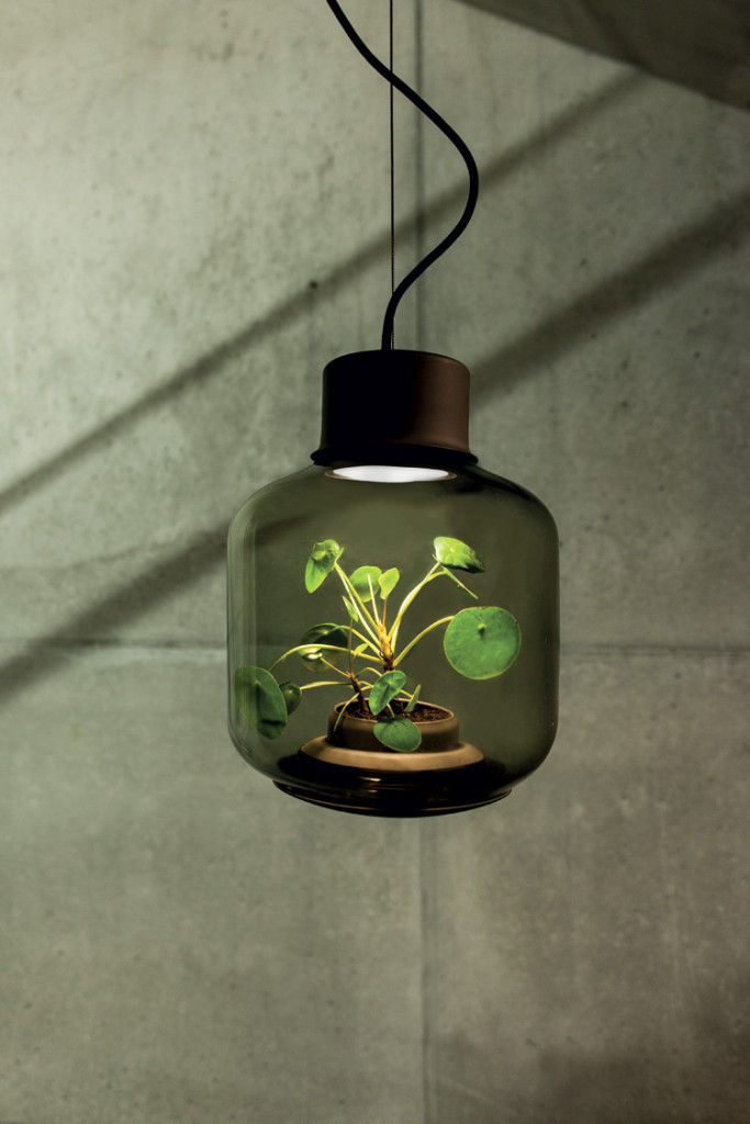 mygdal-plant-lamp-by-nui-studio-©ErwinBlock-Photography-8
